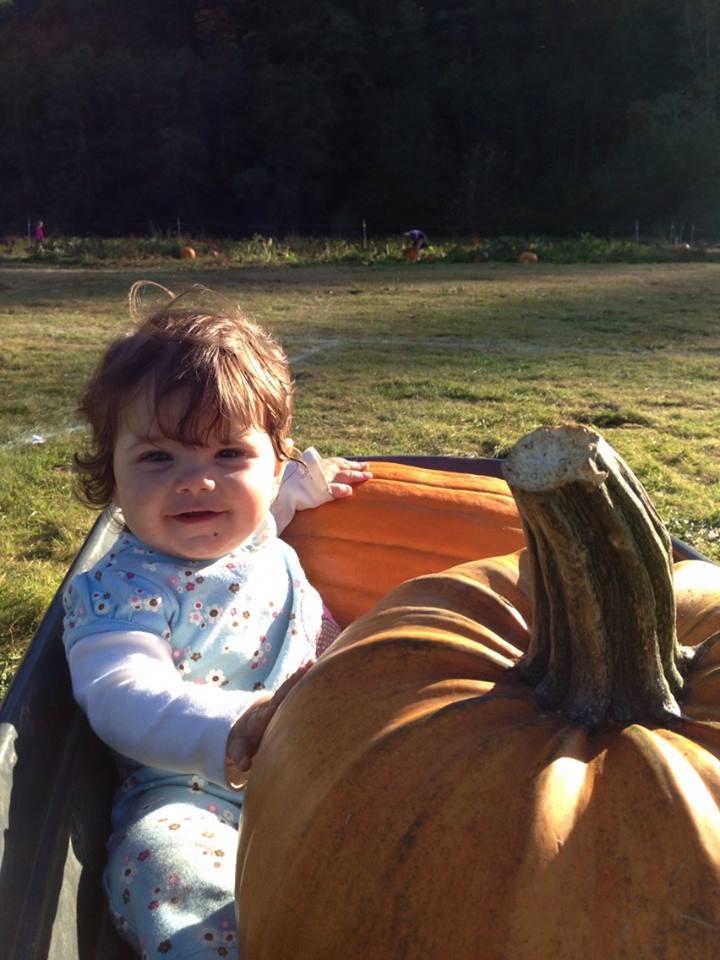 alivia pumpkin