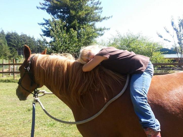 Katelin horse